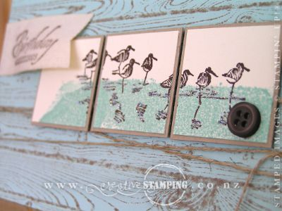 Wetlands Masculine Birthday Card