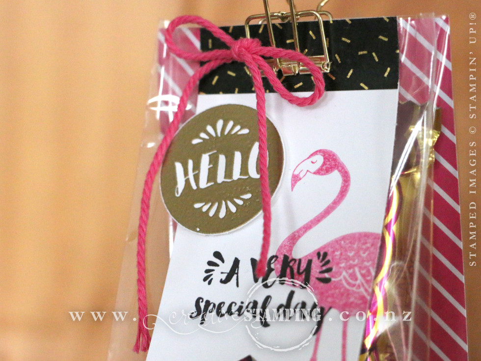 Pop of Pink Gusseted Cellophane Gift Bag