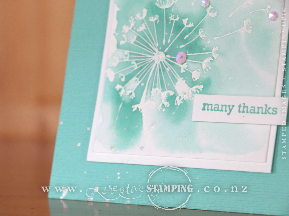 Dandelion Wishes Thank You Cards