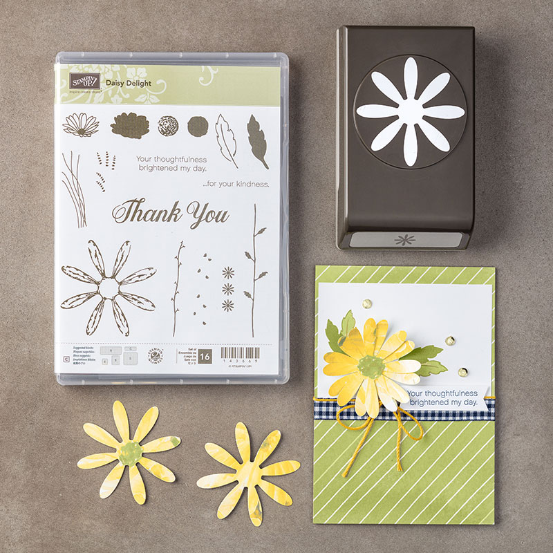 Daisy Delight Stamp Set + Daisy Punch Bundle