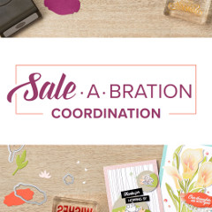Sale-A-Bration Coordination